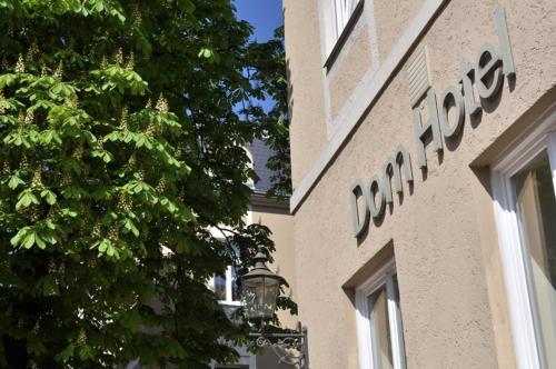 Dom Hotel Kastanienbaum